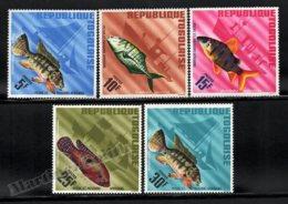 Togo 1967 Yvert 515-25, Fauna. African Fishes - MNH - Togo (1960-...)
