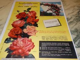 ANCIENNE PUBLICITE LES PLUS BELLE ROSES DU MONDE  GAUJARD FEYSIN 1956 - Publicidad