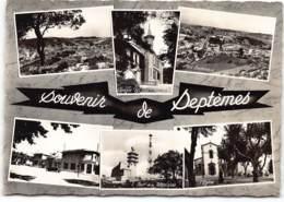 Septemes  Les Vallons . Souvenir De.....  CPSM GF - France