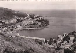 CERBÈRE  - (66)  -  CPSM DENTELÉE VERS 1960.. - Cerbere
