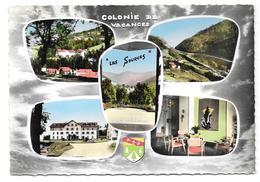 68/88 - COLONIE LES SOURCES - CE PEUGEOT De Sochaux - COL DE BUSSANG - Multivues - Ed. La Cigogne Cpsm Colorisée - Bussang