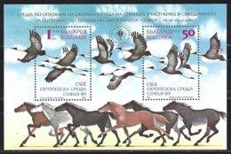 Yv Bulgarie BF161,  Protéction De La Nature : Cigognes ** - Storks & Long-legged Wading Birds