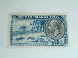 TIMBRE Des ILES CAIMANS - CAYMAN ISLANDE N°94 - 1935 -  HAWKSBILL TURTLES - Neuf Sans Charnière (CB) - Caimán (Islas)