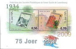 Luxembourg  -  Briefmarken -  2009  75 Joer FSPL - Blocks & Sheetlets & Panes