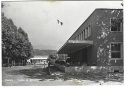 6644 - GORIZIA VALICO DI FRONTIERA CASAROSSA ITALIA JUGOSLAVIA ANIMATA 1960 - Gorizia
