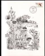 FDC,  1979, Apiculture, Abeille, Gravure: Huguette Sainson - FDC