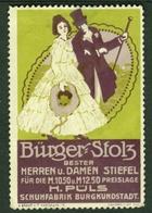 """Burgkunstadt Franken B Lichtenfels ~1913 """" H.Püls Schuhfabrik Bürgerstolz """" Vignette Cinderella Reklamemarke - Erinnophilie"""