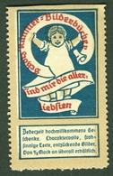 """Mainz Mayence ~1913 """" Josef Scholz Kinderbuchverlag """" Vignette Cinderella Reklamemarke - Erinnophilie"""