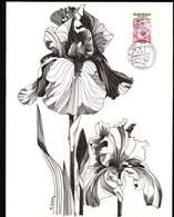 Gravure 21 X 26,5 Cm 2 Volets, Huguette Sainson, Glaïeuls - Otros