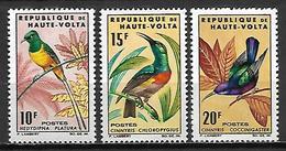 HAUTE VOLTA   -   1965   .  Y&T N°138 à 140*.  Oiseaux.  Série Complète - Alto Volta (1958-1984)