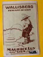 14401 - Wallisberg Fendant De Sion Maurice Luy Ne Buvez Jamais D'Eau   !!!! Collée Sur Carte Postale - Other