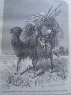 Chameau De émigrant Mongol -Mongolia - Camel Desert GOBI -  CHINA Chine Chinese - Engraving 1864 TDM1864.2.336 - Estampas & Grabados