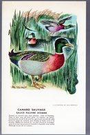 Image -recette  Pour Le Corps Médical.. Offerte Par BIOLACTYL: Canard Sauvage (ill Van Rompaey) (M0122) - Other