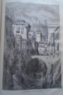 Les Bords De Darro - Grenade -   Granada -   Spain Espana, Engraving 1864 TDM1864.2.397 - Estampas & Grabados
