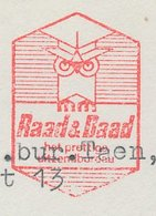 Meter Cut Netherlands 1969 - Oldebroek Bird - Owl - Vogels