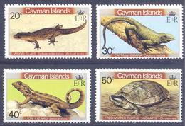 1981. Cayman Islands, Reptilies, 4v, Mint/** - Iles Caïmans