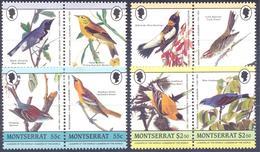1985. Montserrat, Audubon, Birds, 8v, Mint/** - Montserrat