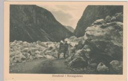 (97197) AK Stenskred I Norangsdalen, Vor 1945 - Norvège