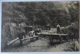 Gruß Aus Den Vogesen, Pioniere Beim Holzfällen (56128) - Guerre 1914-18