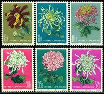 CHINA 1960 Flowers,Blume,Fleurs,Chrysanthemum,Chrysanthemen,Mi.570-5,MNH - Pflanzen Und Botanik
