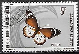 HAUTE VOLTA   -   1971  .  Y&T N° 245 Oblitéré  -   Papillon - Alto Volta (1958-1984)