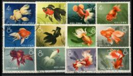 CHINA PRC - 1960  Chinese Goldfish. S38. CTO. - 1949 - ... People's Republic