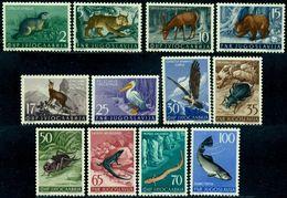 Yugoslavia 1954 Red Deer,Bear,Bird,Pelican,Vulture,Fish,Beetle,M.738,MNH,CV=$210 - Eagles & Birds Of Prey