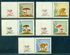 1964 Mushrooms,Pilze,Champignons,Settas,Russia,2983 Y,CV€25/$35,MNH,TAB/1/L - Pilze