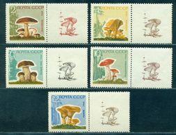 1964 Mushrooms,Pilze,Champignons,Settas,Russia,2983 Y,CV€25/$35,MNH,TAB/2/L - Pilze