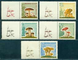 1964 Mushrooms,Pilze,Champignons,Settas,Russia,2983 Y,CV€25/$35,MNH,TAB/3/L - Pilze
