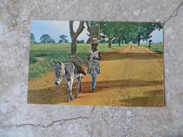 CPSM Haute Volta Burkina Faso Départ Pour Le Marché Avec Âne 1963 9/14 Cm - Burkina Faso