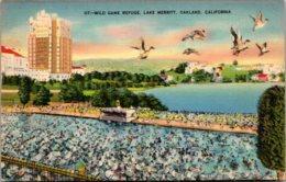 California Oakland Lake Merritt Wild Game Refuge 1940 - Oakland