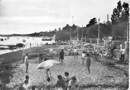 SPORT VOLLEY - 33 - ANDERNOS La Plage ( Animation : Partie Volley Ball ) Dentelée Noir Blanc Grand Format 1956 - Gironde - Volleyball