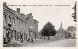 Flémalle-haute  (aux Trixhes) Place De La Liberté Bien Animée Circulé En 1948 - Flémalle