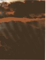 CD) Guyane CP Tres Grand Format Crépuscule Sur La Canopée - Guyane