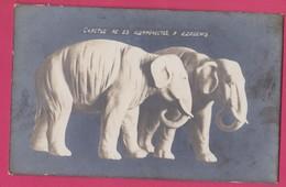 Russia, Russie, ELEPHANT Elepants Figures Vintage PHOTO POSTCARD - Elephants