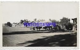 134201 CHILE LAUTARO CAUTIN PUEBLO TIPICO YEAR 1936 PHOTO NO POSTAL POSTCARD - Chili