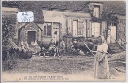 ROSOY- INTERIEUR D UNE DERME- LA VIE AUX CHAMPS EN BOURGOGNE - France