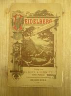 Heidelberg Und Umgegend 1892 Plan Der Stadt - Mapas Topográficas