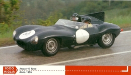 1000 MIGLIA  CARTONCIN  PUBBLICITARIO    JAGUAR D TIPE  1955     SUL  RETRO  CLASSIFICHE - Automobilismo - F1