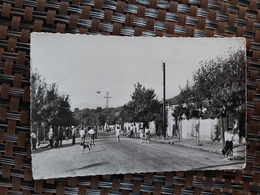 Heliopolis. ( Rue Central En Photo) Le 10 09 1957. Algérie - Algeria