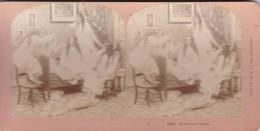 STEREO PHOTO  KILBURN YEAR 1899 / THEIR LAST VICTIM - Stereoscopic