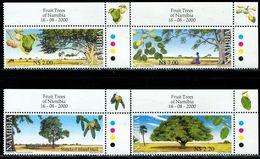 AZ3606 Namibia 2000 Plant Big Tree And Seeds 4V With Right Angle Sides MNH - Bäume