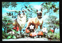 Chiens Boxer & Colley - CARTE 3 D - 3 DIMENSION POSTCARD - Dogs