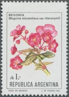 Thematik: Flora, Botanik / Flora, Botany, Bloom: 1985, ARGENTINA: Flower Definitive 1a. 'Begonia Mic - Plants