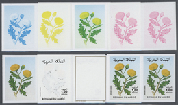 Thematik: Flora, Botanik / Flora, Botany, Bloom: 1986, Morocco. Progressive Proofs (8 Phases) For Th - Plants
