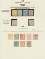 Montenegro: 1874-1918 Spez.Sammlung In Schaubeck Album Mit Proben, Ungezahnt, Bogenteile Und Abarten - Montenegro