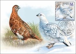 TH_ Belarus 2020 Fauna Seasonal Variations Hare Weasel Partridge Bird Birds Mammals 6x MaxiCards MC - Sellos