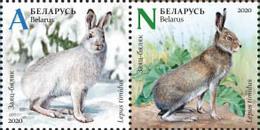 TH Belarus 2020 Fauna Seasonal Variations Hare Weasel Partridge Bird Birds Mammals 6v MNH - Otros