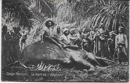 Auguste Béchaud - Congo Français - La Mort De L'éléphant - - French Congo - Other